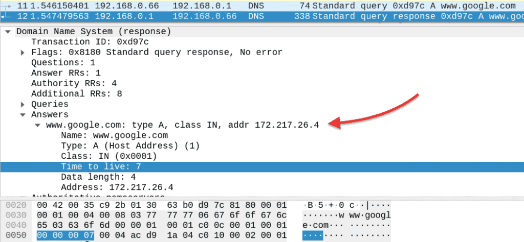 DNS query response packet capture